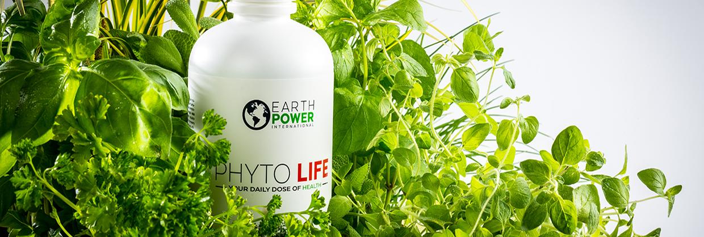 phyto life - Phyto Life